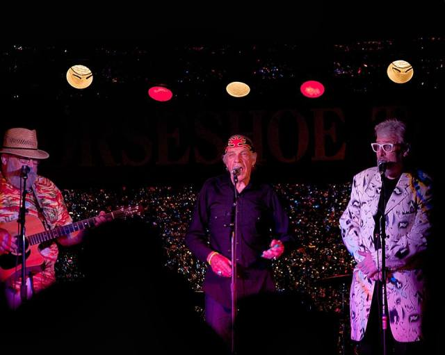 I loved performing Kazoo Travesty with my buddies Don Francks and Tony Quarrington at The Horseshoe Tavern!